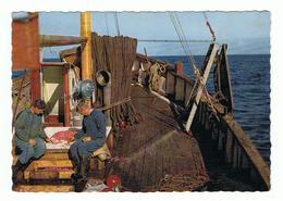 SWEDEN:  BOHUSLAN  -  RAKFISKE  -  TO  ITALY  -  FG - Pesca