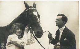 Cheval - Paard - Horse - Pfeerd - RTB 3303 - Chevaux