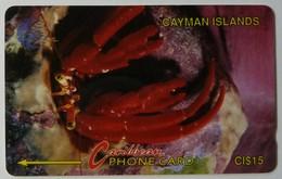 CAYMAN ISLANDS - L&G - CAY-4B - Hermit Crab - 4CCIB - Used - Isole Caiman