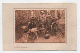 - CPA BELGIQUE - Laitières Flamandes 1915 (belle Animation Avec Attelage De Chien) - - Ambachten
