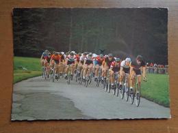 Fiets, Vélo, Bycicle / Road Race --> Beschreven - Cartes Postales