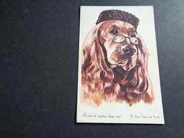 Chien ( 336 )  Hond - Chiens