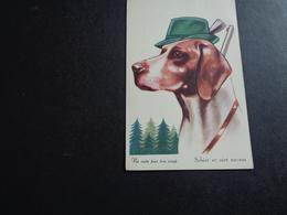 Chien ( 339 )  Hond - Chiens