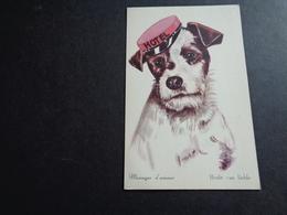 Chien ( 340 )  Hond - Chiens