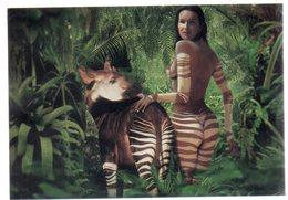 REF EX2 : Carte Postale Neuve Sous Blister Femme Nue Okapi - Animaux & Faune