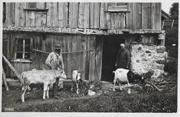 SCHWEIZER ALPWIRTSCHAFT → Bauer Mit Kalb Und Ziegen Vor Dem Stall, Fotokarte Ca.1930 - Schweiz