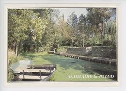 Saint Hilaire La Palud, Vue Sur Le Marais Poitevin (cp Vierge N°784/79 Dubray) - Altri Comuni