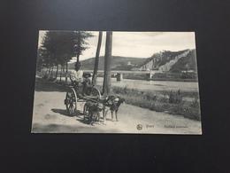 Yvoir - Equipage Ardennais - Chien - Hondenkar - Namen - Yvoir