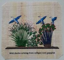 Egypt - Papyrus - Ducks - Dessins
