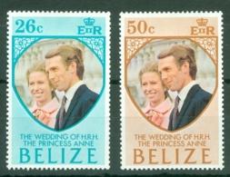 Belize: 1973   Royal Wedding     MH - Belize (1973-...)