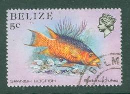 Belize: 1984/88   Marine Life   SG770    5c   Used - Belize (1973-...)