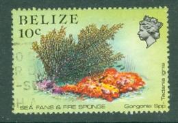 Belize: 1984/88   Marine Life   SG772    10c   Used - Belize (1973-...)