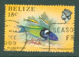 Belize: 1984/88   Marine Life   SG773a    15c   [Perf: 13½]  Used - Belize (1973-...)