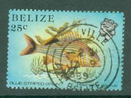 Belize: 1984/88   Marine Life   SG774a    25c   [Perf: 13½]  Used - Belize (1973-...)