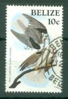 Belize: 1985/88   Birth Bicentenary Of John Audubon   SG820    10c  Used - Belize (1973-...)