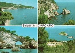SALUTI DAL GARGANO-VIAGGIATA -F.G - Foggia