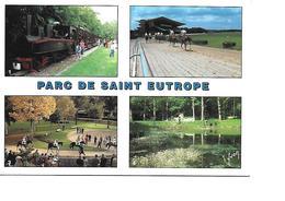 91 EVRY Cpm Parc De SAINT EUTROPE Multivues - Evry