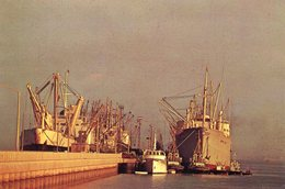 Bahrain - Harbour - Ship - Bahrain