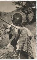 Djibouti L'enfant Et L'agneau - Gibuti