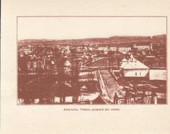 CPA ALBA IULIA- 1918 GREAT UNION, PARTIAL PANORAMA - Roumanie