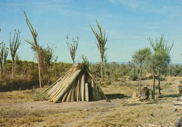 MADAGASCAR - Les Charbonniers De AMBOVOMBE - Phot. C. Chadefaux - Ed. T.M.V. - Madagaskar