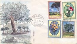 Italia Italy 1966 FDC ROMA Flora Italiana Pino Garofano Margherita Olivo Pine Carnation Daisy Olive Tree - Flora