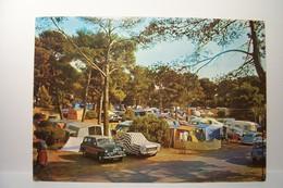 LE  DRAMONT    - Le Camping  International Du Dramont - AUTOMOBILES - ( Pas De Reflet Sur L'original ) - Frankreich