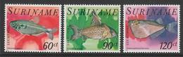SERIE NEUVE DU SURINAM - POISSONS TROPICAUX N° Y&T PA 78 A 80 - Fische