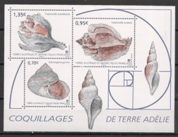 TAAF - 2019 - N°Yv. F898 - Coquillages - Neuf Luxe ** / MNH / Postfrisch - Muscheln