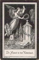 DP. CYRIEL DEWILDE ° COUCKELAERE 1891 - + HANDZAEME 1912 - Godsdienst & Esoterisme