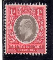 EAST AFRICA ORIENTALE & UGANDA PROTECTORATES 1903 KING EDWARD VII RE EDOARDO 1a MNH - Kenya, Uganda & Tanganyika