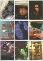 Série 1996 The X-Files  9 Cartes (3) - X-Files