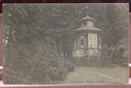 Cpa Voneche  Chalet - Beauraing