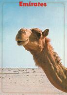 "UAE - The ""desert Ship"" 1989 - Verenigde Arabische Emiraten"