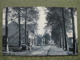 PUURS - STEENWEG NAAR WILLEBROECK 1909 ( Ed. SBP ) - Puurs