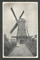 Oude Kaart. Brasschaat.  Molen.  De Winter.  1849-1926 - Brasschaat