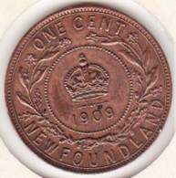 Canada. Terre-Neuve / Newfoundland 1 Cent 1909. Edward VII - Canada