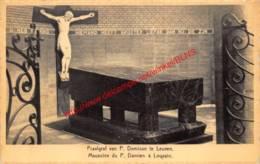 Praalgraf Van Pater Damiaan - Leuven - Leuven