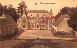 Château De Masogne - Ciney - Ciney