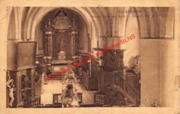 Groote Beuk Der Kerk - Huldenberg - Huldenberg