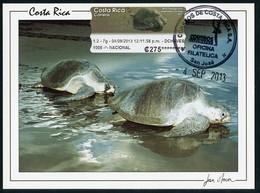 COSTA RICA - Carte Maximum Card - ATM - Tortuga Lora / Lora Turtle (Lepidochelys Olivacea) - Costa Rica