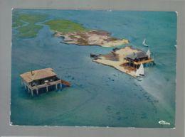 CP (33) Bassin D'Arcachon - Vue Aérienne - Cabanes Dans L'Ile Aux Oiseaux Au Milieu Du Bassin - Arcachon
