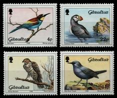 Gibraltar 1988 - Mi-Nr. 552-555 ** - MNH - Vögel / Birds - Gibraltar