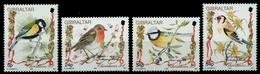 Gibraltar 1994 - Mi-Nr. 702-705 ** - MNH - Vögel / Birds - Gibraltar
