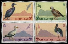 Gibraltar 1991 - Mi-Nr. 619-622 ** - MNH - Vögel / Birds - Gibraltar