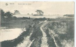 Genk - Genck - Chemin Dans Les Marais - Edition Maison Lowis Genck - 1919 - Genk