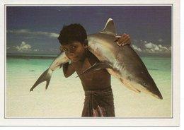 MALDIVES - REQUIN A POINTE BLANCHE - Maldiven