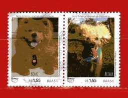 (1Us) Brasile °-  2018 ANIMALS, FAUNA, UPAEP, AMERICA, SERIES, CATS, . Used. - Brasile