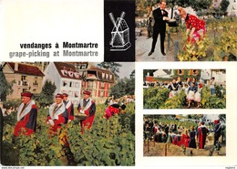 75-PARIS-MONTMARTRE-LES VENDANGES-N°546-D/0129 - France