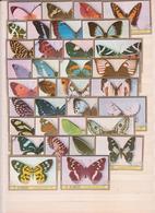 Lot Timbres Papillons (2) - Briefmarken
